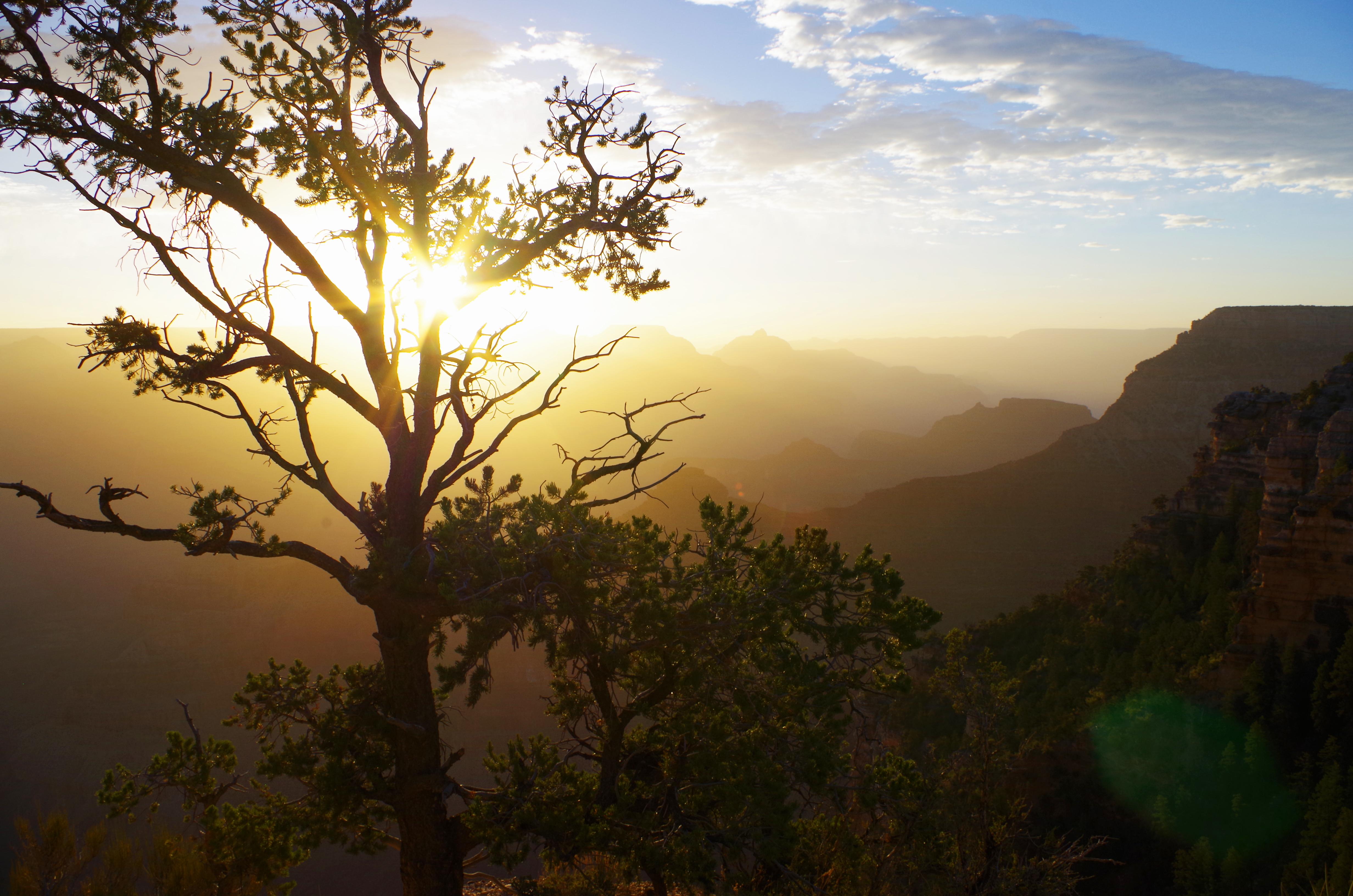Am Grand Canyon solltet ihr unbedingt mindestens einen Sonnenaufgang -oder untergang miterleben!