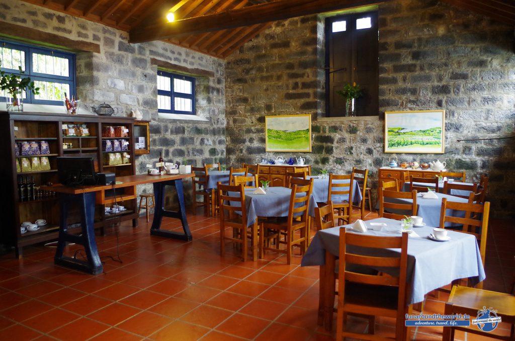 Teeanbau auf Sao Miguel