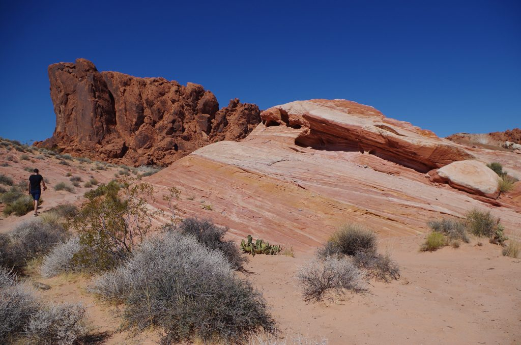 Rainbow Vista Trail im Valley of Fire